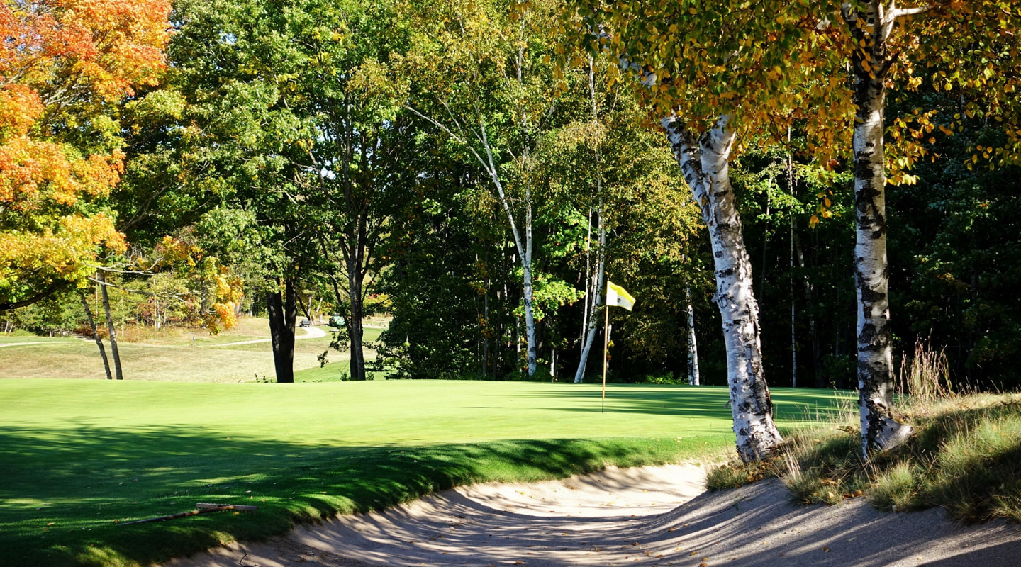 The 12th green is tucked back among trees and sand