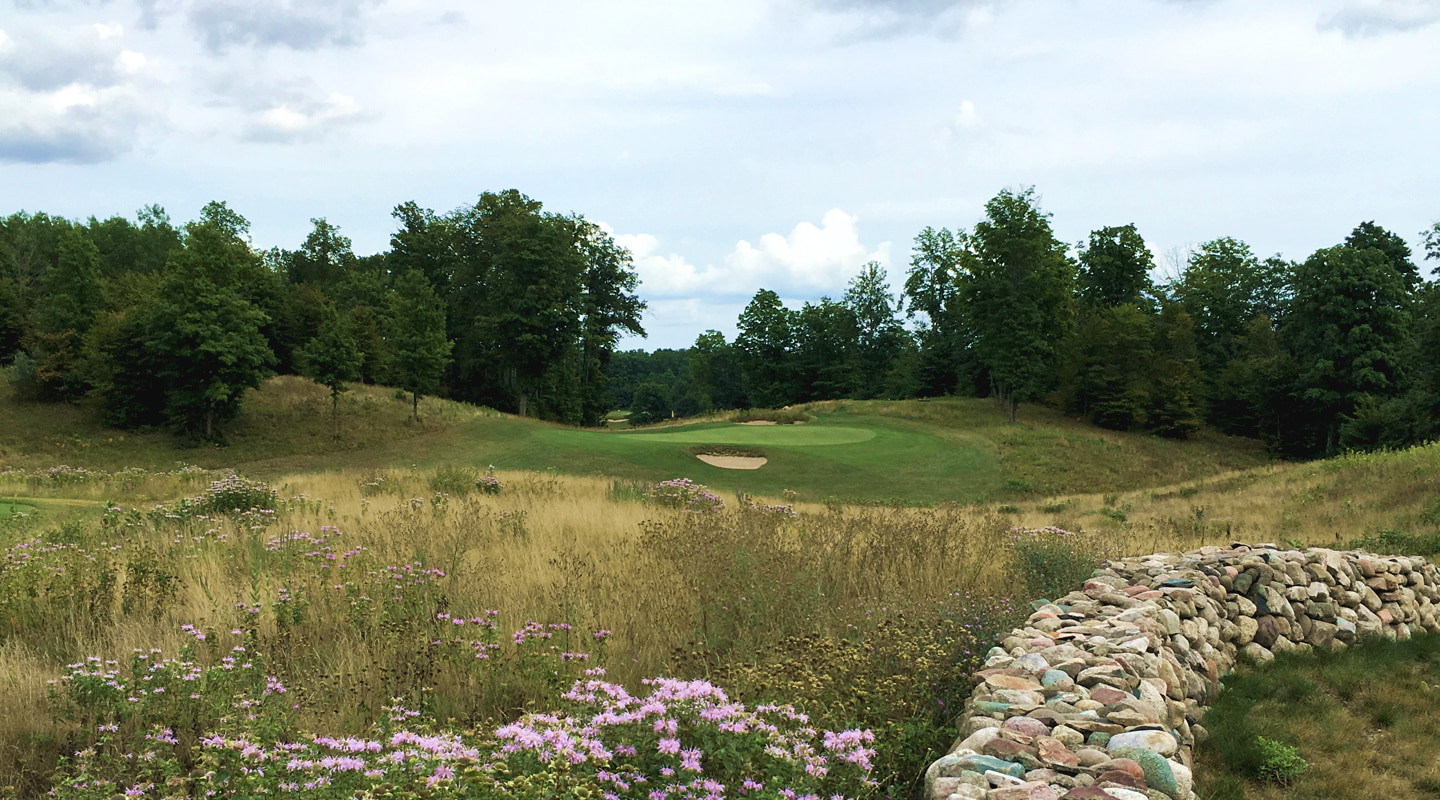 The 11th green is set on a hillside beyond a sea of native grass and flowers